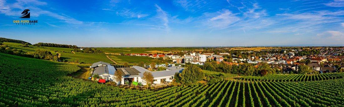 Weingut Hitziger mitten in den Weinbergen