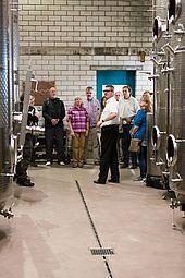Geführte Weinprobe im Weinkeller