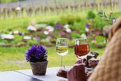 Genuß und Ruhe pur im Weingut
